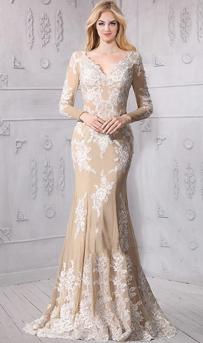 Fantastic Mermaid V Neck Long Sleeve Champagne Tulle Ivory Lace Wedding Dress