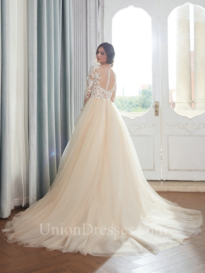 Princess V Neck Champagne Colored Tulle Embroidery Wedding Dress