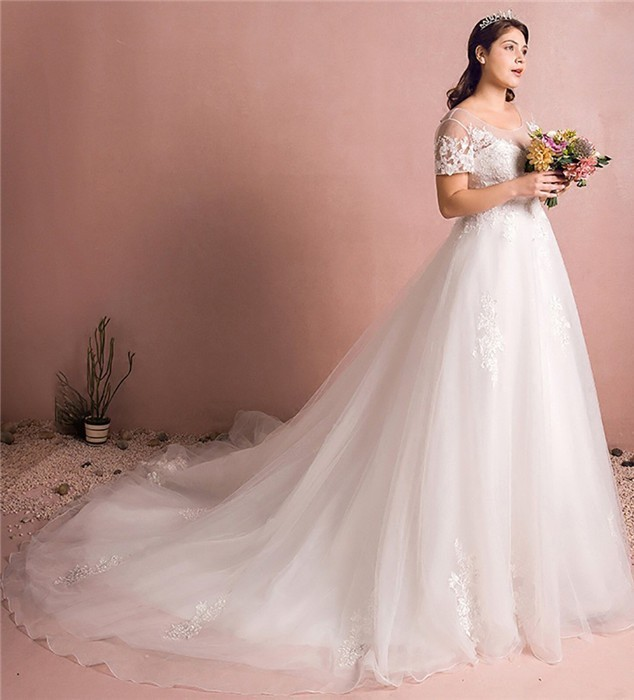 A Line Scoop Neck Short Sleeve Cathedral Train Tulle Lace Plus Size Wedding  Dress