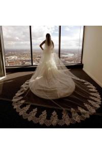 Stunning Tulle Eyelash Lace Wedding Bridal Cathedral Veil